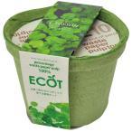 種から育てる栽培セット 地球にやさしいエコポット