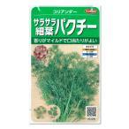 Yahoo!園芸ネットサカタ 野菜タネ パクチー(コリアンダー):サラサラ細葉パクチー