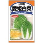 ハクサイ:愛姫白菜(めごひめはくさい) 野菜タネ