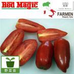 野菜の苗/料理用イタリアントマト:サンマルツァーノレッドマジック3.5号ポット