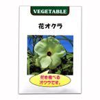 野菜タネ 花オクラ(トロロアオイ)