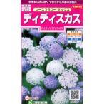 サカタ 花タネ レースフラワーミックス:ディディスカスの種