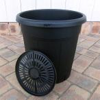果樹鉢:ブラック 310型(12号)