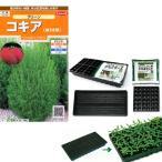 春まき種の苗つくりセット:コキア(ほうき草)