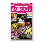 サカタ 花タネ パンジー・よく咲くスミレミックスの種