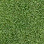 芝の種:ケンタッキーブルーグラスブルーノート1kg