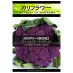 Yahoo!園芸ネットまき時過ぎた為セール カリフラワー:ディシシリアバイオレット(紫実) 野菜タネ *