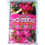 シャコバサボテン&多肉植物の土 14L