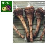 野菜の苗 サトイモ 八つ頭 やつがしら 種芋 500g