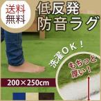 ラグマット 3畳 カーペット 3畳 低反発ラグ 長方形 200×250 洗える 防音 オールシーズン ウォッシャブル