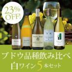ブドウ品種飲み比べ白ワイン5本セット HR2-2 / 750mlx 5 / 白
