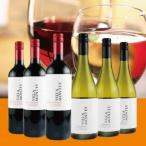 赤白ワインセット  /  ヴィラ・モンテス赤白6本セット VM6-3  /  モンテスS.A チリ  /  750ml×6