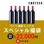 ワイン エノテカ ワインセット スペシャル福袋 赤だけ6本 税込22,000円 YG3-1 [750ml x 6] 送料無料