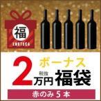 ワイン 赤 ワインセット ボーナス福袋 2万円 (赤のみ