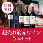ワイン ワインセット エノテカ厳選!超売れ筋赤ワイン5本セット RC9-2 [750ml x 5] 送料無料