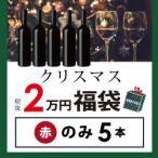ショッピング赤 赤ワインセット / クリスマス福袋2万円(赤のみ5本) XF11-5 / 750ml×5 / 送料無料