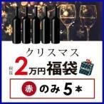 ショッピングワイン ワイン 赤ワインセット クリスマス福袋2万円(赤のみ5本)CF12-1 [750ml x 5]  送料無料