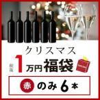 ショッピングワイン ワイン 赤ワインセット クリスマス福袋1万円(赤のみ6本)XF12-1  【750ml x 6】  送料無料