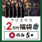 赤ワインセット / クリスマス福袋2万円(赤のみ5本) CF12-3 / 750ml×5 / 送料無料