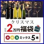 ショッピングワイン ワイン 赤・白・スパークリングセット クリスマス福袋2万円(赤白泡ミックス5本)CF12-4 [750ml x 5]  送料無料