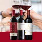 ワイン ワインセット 6月のおすすめ赤ワイン3本セット KK6-4 [750ml x 3]