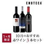 ワイン ワインセット 10月のおすすめ赤ワイン3本セット KK10-3 [750ml x 3]