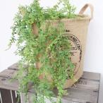 フェイクグリーン 元祖モフモフ 観葉植物 フェイク グリーン インテリア 雑貨 いなざうるす屋