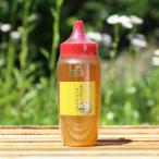 はちみつ 国産 キハダ蜂蜜500gKH500 蜂蜜 純粋 無添加 坂井養蜂場 父の日 お中元 御中元