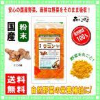 国産 ウコン 【粉末】 100g やさい パウダー 100% 送料無料 森のこかげ 健やかハウス 野菜粉末 うこん