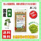 国産大根(葉)【粉末】 100g やさいパウダー 100% 送料無料 森のこかげ 健やかハウス 野菜粉末 だいこん ダイコン葉