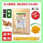 国産 ウコン 粉末 業務用 500g やさい パウダー 100% 送料無料 森のこかげ 健やかハウス 野菜粉末 うこん