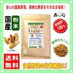 国産 ショウガ 粉末 200g 生姜 ジンジャー パウダー 業務用 野菜粉末 送料無料 森のこかげ