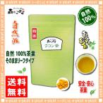 ウコン茶 【粉末】 100g 送料無料 森のこかげ 健やかハウス