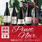 ワインセット 赤 大人気ブドウ品種ピノ ノワールだけ