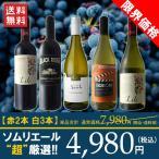 ワインセット 赤 白 限界価格 A面のミックス 2名のソ
