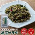 十種類のねばシャキ海藻サラダ 20g×1袋 送料無料 メール便 訳あり わかめ 昆布 海苔