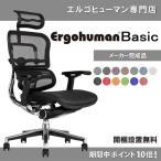 エルゴヒューマン ( ergohuman ) ベーシック/ ヘッドレスト付 オフィスチェア 椅子 EH-HAM/EGP 【完成品】