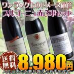(送料無料)ブルゴーニュ赤ワイン3本セット(B)ワンランク上のドメーヌ厳選
