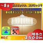 NEC HCDB0856 LIFELED'S(ライフレッズ)LED和風ペンダントライト 〜8畳 3500lm・29W 昼光色(6700K)樹脂ヒゴセード 特殊加工和紙貼「送料区分B」