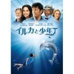 イルカと少年 【DVD】