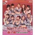 ドリームモーニング娘。 コンサートツアー2011春の舞 〜卒業生DE再結成〜 【Blu-ray】