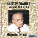 マーラー 交響曲第1番 巨人