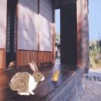 音速ライン/風景描写 【CD】