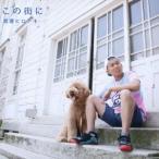 渡邊ヒロアキ/この街に 【CD】