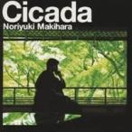 槇原敬之/Cicada(通常盤) 【CD】