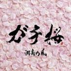 湘南乃風/ガチ桜 【CD】