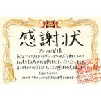 AKB48/AKB48グループ感謝祭〜ランクインコンサート・ランク外コンサート 【DVD】