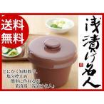 浅漬け名人(茶)(菜漬器)(漬物レシピ本付き)
