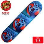 SANTA CRUZ サンタクルズ デッキ SCREAMINGTAG DECK 7.5 SCD-099 skateboard スケートボード スケボー