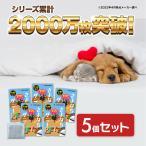 ペット用 ダニ捕りシート ダニ 置くだけ 日本製 さよならダニーPET カーペット 布団 ソファ 畳 公式 送料無料 5個セット 10%OFF
